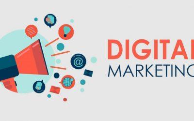 [Senior] Digital Marketing (mạnh về SEO)